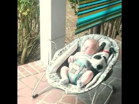 VIDEO – Kucēns dodas diendusā kopā ar bēbi! (Eisleigh & Clyde (original video))