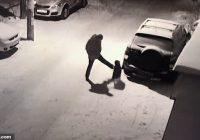 Tūlītēja karma! Jautrs mirklis kā piedzēries vīrietis Krievijā iesper  garām ejošam sunim un pats attopas ar seju sniegā