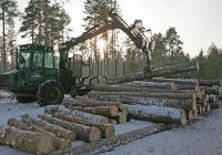 Pietiek.com: Mežziņu mafija ir lielākā/slepenā un neatklātā mafija Latvijā; Skandāls ap mežziņu mežu īpašumiem