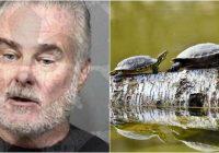 """Vīrietis dēvē sevi par """"svēto"""" un draud iznīcināt pilsētu ar viņa bruņurupuču armiju"""