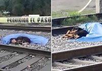 Sirdi plosošos foto redzams, kā suns ieritinājies blakus saimnieka līķim, kuru notrieca vilciens