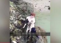 VIDEO: Tiek meklēti nelieši, kuri nometa no klints jūrā pārbijušos suni