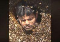 VIDEO: Neticēsiet, līdz ieraudzīsiet paši savām acīm – vīrietis bez problēmām saujām bāž mutē bites
