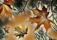 Zvaigžņu eksperti nosauc zvaigžņu zīmes, kurām jau rudenī gaidāms liels pārmaiņu laiks